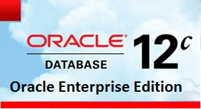 Oracle Database Enterprise Edition, métrica por procesador